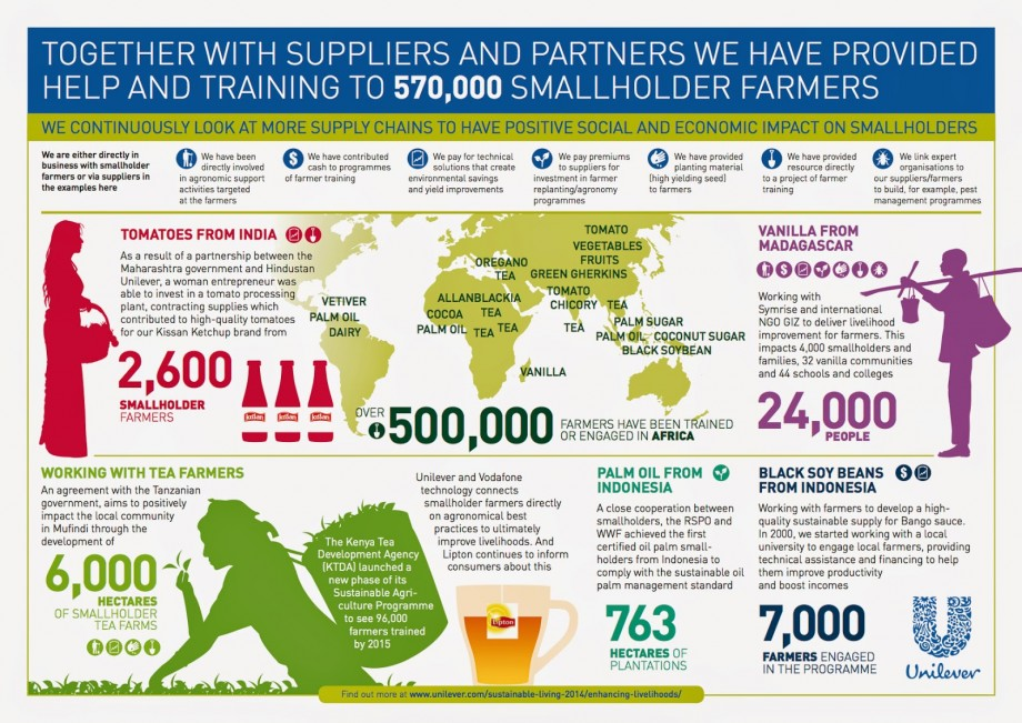 How Sustainability is Growing Unilever's Brand Equity and Profits
