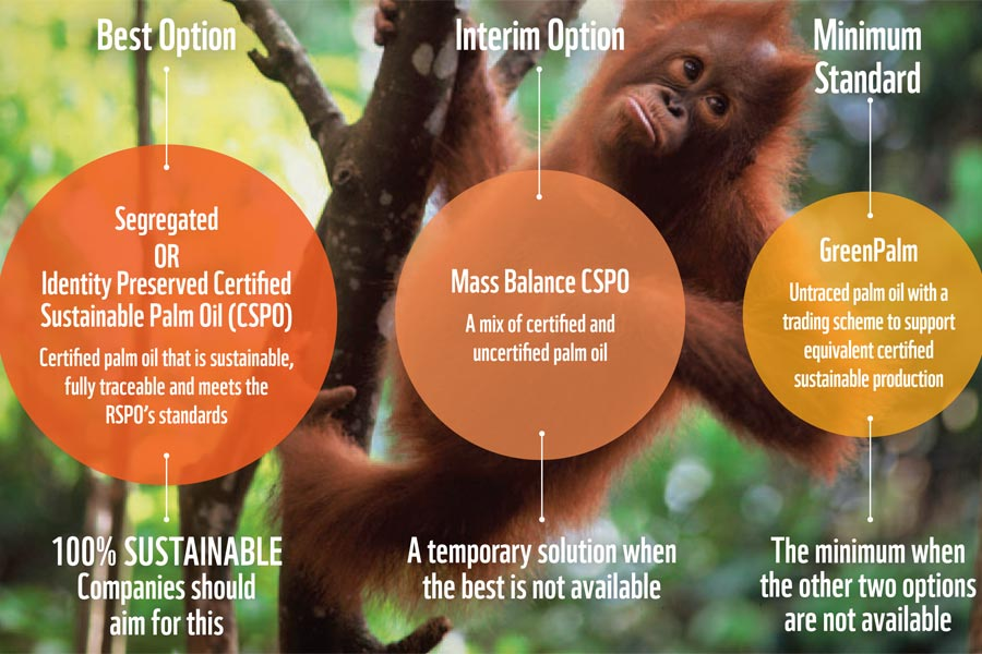 palm oil essay In support of its warnings about the dangers of palm oil, the center cites two meta-analyses that show that palm oil raises blood cholesterol levels a 1997 british analysis evaluated 147 human trials and concluded that palmitic acid, an active ingredient in palm oil, raised total blood cholesterol levels.