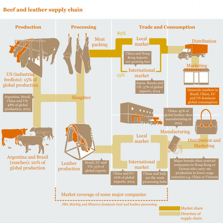 347696_beef-and-leather-supply-chain.1-01