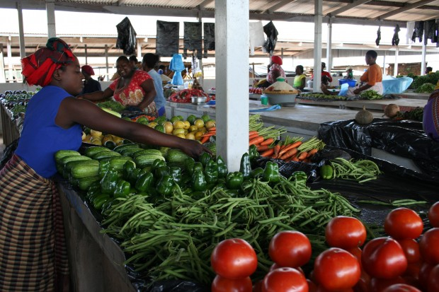 Markets-are-critical-to-the-success-of-smallholder-farmers-credit-Busani-Bafana-IPS