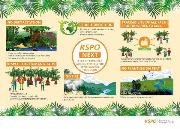 Palm oil: The IOI vs RSPO case – When do you sue an NGO