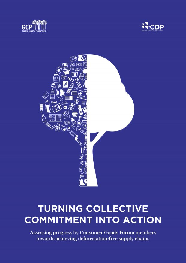 GCP and CDP 2016 Turning collective commitment into action