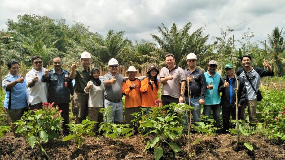 How can palm oil companies help create sustainable rural